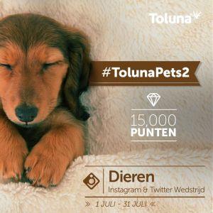 TolunaPets2_NL